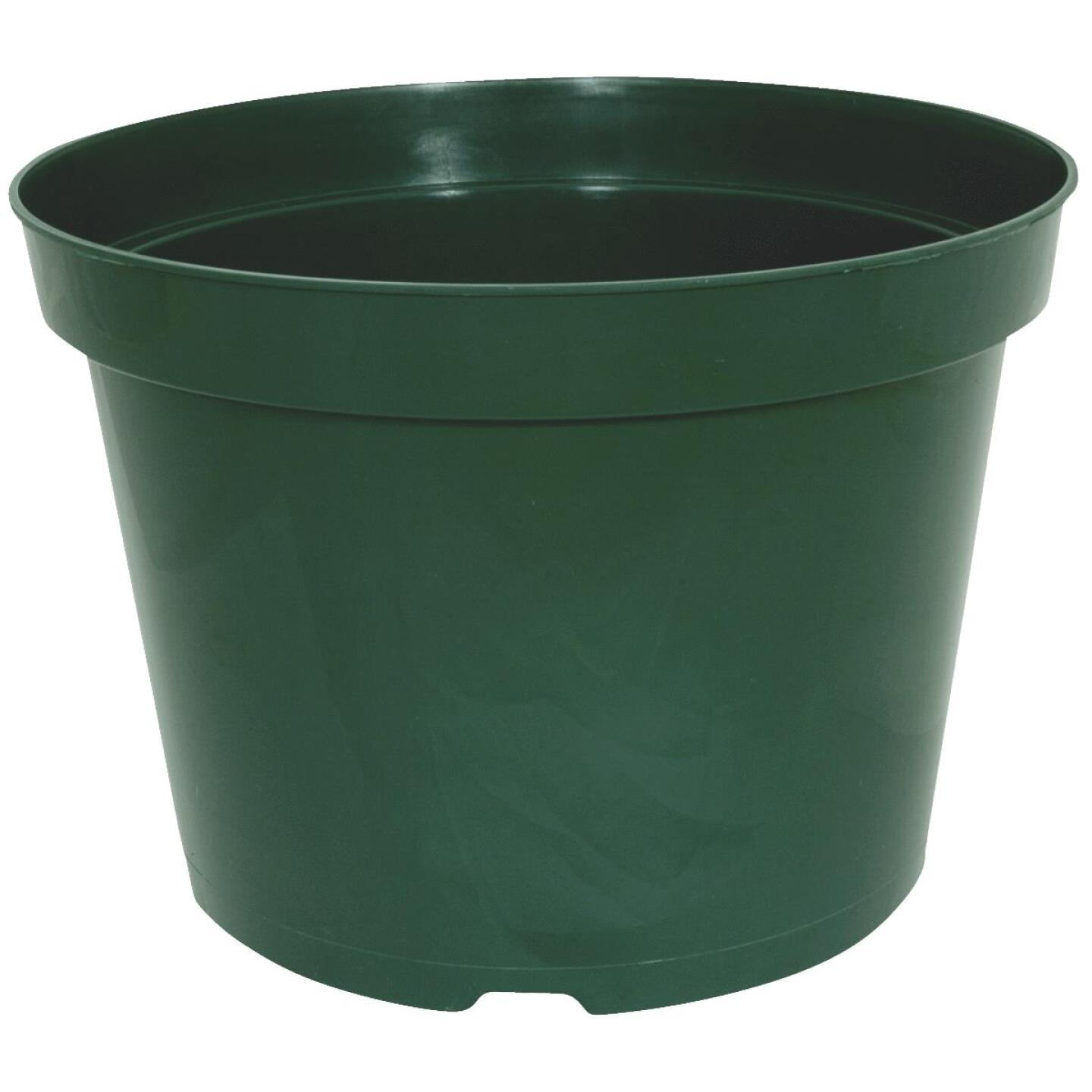 Myers 4.63 In. H. x 6 In. Dia. Green Poly Flower Pot Image 1